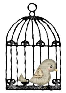 O passarinho que construiu sua própria gaiola